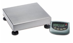 Champ General Purpose Bench Scale